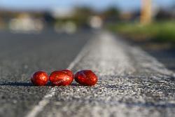 赛道上的复活节彩蛋