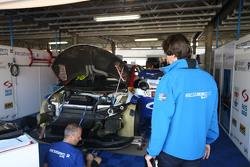 Dusan Borkovic, Honda Civic, Proteam Racing