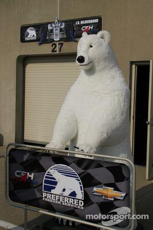 Garajları izleyen bir kutup ayısı