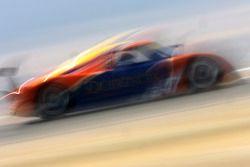 #47 TruSpeed Motorsports Porsche Riley: Charles Morgan, Rob Morgan, BJ Zacharias, #60 Michael Shank