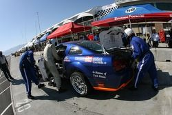 Arrêt aux stands pour la Mustang GT n°37 JBS Motorsports : Jim Seafuse, Bret Seafuse, James Gue