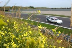 Heinz-Harald Frentzen et quelques fleurs locales au bord du circuit de Zandvoort