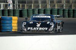 #6 Playboy Racing/ Mears Lexus Riley: Brian Frisselle, Mike Borkowski