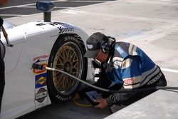 Vérification des pneus pour la Pontiac Crawford #09 Spirit of Daytona Racing