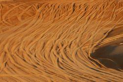 Ambiance du désert