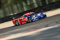 #55 Team Oreca Saleen S7R: Stéphane Ortelli, Soheil Ayari