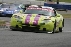 #102 Red Racing Viper GTSR: Sebastian Carcon, Thierry Stepec