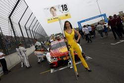 Gridgirl von Augusto Farfus, BMW Team RBM, BMW M34 DTM