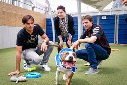 Jérôme d'Ambrosio, Dragon Racing e Nelson Piquet Jr., China Racing visita la Battersea Dogs Home
