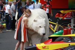 Una niña acaricia el oso polar Abt Audi Sport