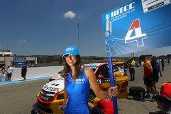 La chica de parrilla de Tom Coronel, Chevrolet RML Cruze TC1, ROAL Motorsport