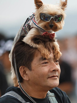 Interesting fan with his dog