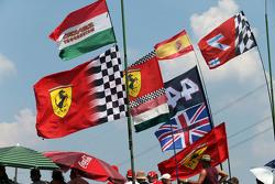 фанати anf прапори