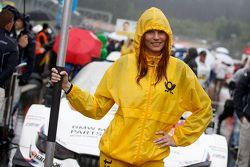 Chica de la parrilla de Martin Tomczyk, BMW Team Schnitzer BMW M4 DTM