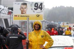 Chica de la parrilla de Pascal Wehrlein, HWA AG Mercedes-AMG C63 DTM