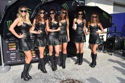 Chicas de Monster Energy