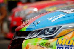 detalle en el Joe Gibbs Racing Toyota de Kyle Busch
