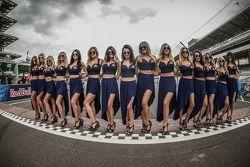Очаровательные девушки Red Bull