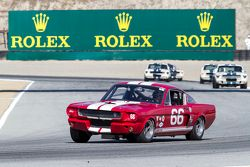 Mark Cane, 1966 Shelby GT350
