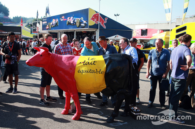 Belgian farmers protest with a cow for a fair price for their milk. - www.xpbimages.com, EMail: req