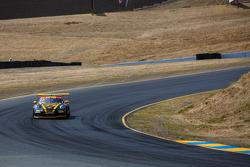 #77 Phoenix American Motorsports Porsche 911 GT3 Cup: Preston Calvert