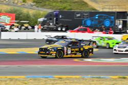 #37 Phoenix American Motorsports Ford Mustang: Kurt Rezzetano