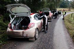 Николай Грязин, Peugeot 208 R2