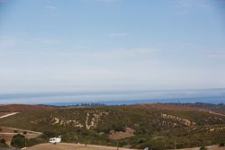 Paisaje de Monterey