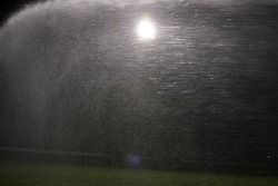 grass being watered, night