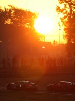 #009 Aston Martin Racing Aston Martin DBR9: David Brabham, Rickard Rydell, #87 Scuderia Ecosse Ferra