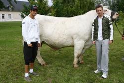 Scott Speed, Scuderia Toro Rosso and Vitantonio Liuzzi, Scuderia Toro Rosso with a big cow