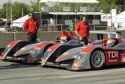 Team Audi Sport North America Audi