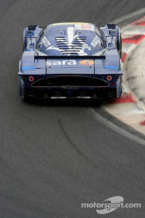 #12 Scuderia Playteam Sarafree Maserati MC 12 GT1: Giambattista Giannoccaro, Max Busnelli, Alex Mull