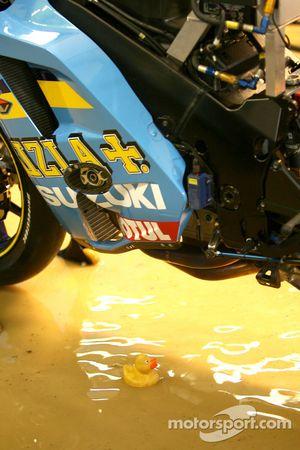Un patito de goma en el Rizla Suzuki