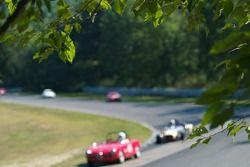 1957 Alfa Romeo Veloce: Lawrence Macks
