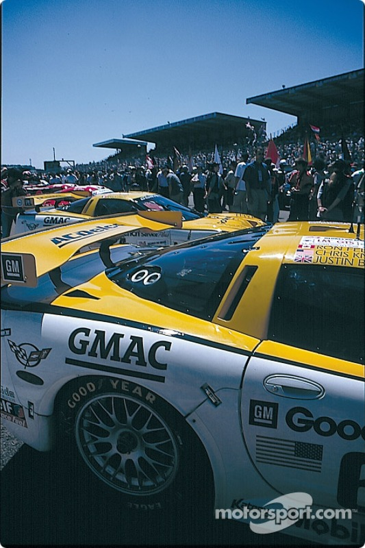 Corvettes on the pre grid