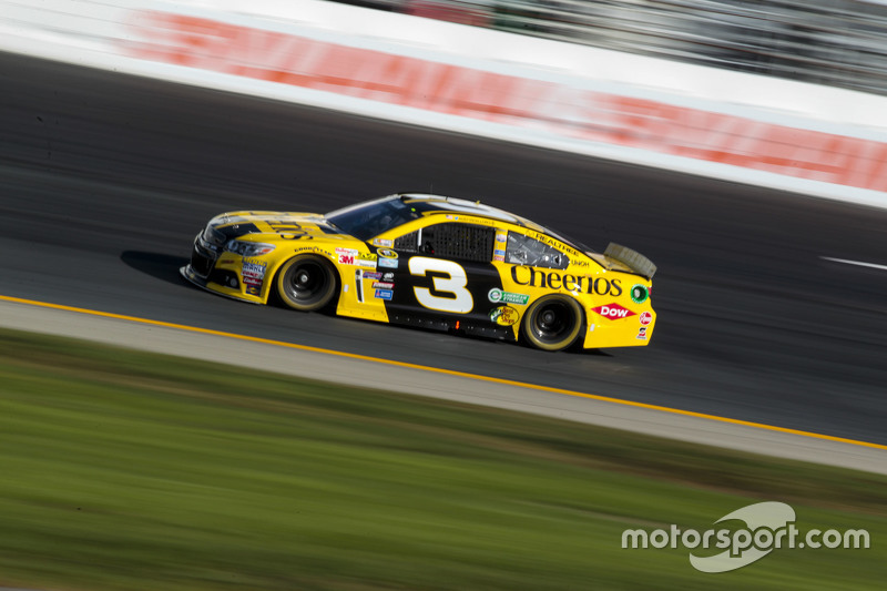 Startnummer 3: Austin Dillon (Childress-Chevrolet)