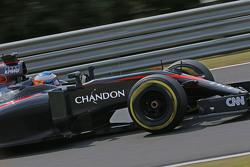 Fernando Alonso, McLaren MP4-30 con lo sponsor Chandon