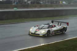 #5 Action Express Racing Corvette DP: Joao Barbosa, Christian Fittipaldi, Sebastien Bourdais