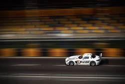 澳门GT杯,2014年澳门格兰披治大赛车,马罗·恩格尔夺胜