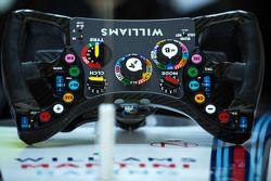 Williams FW37 direksiyonu