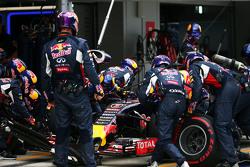 Даніель Ріккіардо, Red Bull Racing RB11 робить піт-стоп