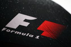 A wet F1 logo