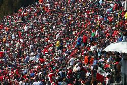Fans in de tribunes