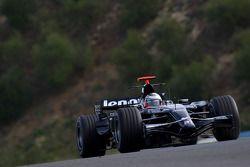 Nico Hulkenberg, WilliamsF1 Team, FW30