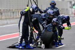Wiiliams F1 Team mechanics