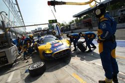Pit stop per la #94 Speedy Racing Team Spyker C8 Laviolette GT2R: Benjamin Leuenberger, Andrea Chies