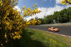 #26 Manthey Racing Porsche 911 GT3 Cup: Frank Krähling, Marc Gindorf, Peter Scharmach