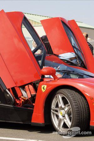 Ferrari Enzo detalle