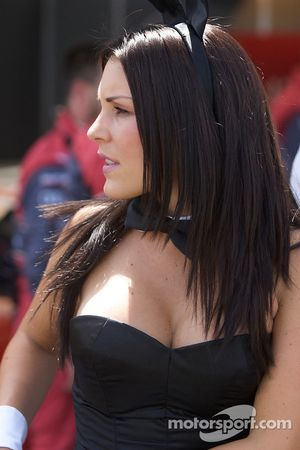 Симпатичная девушка Playboy